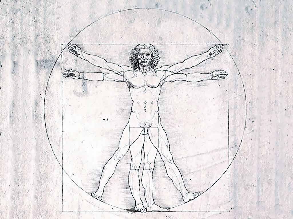 Код да Винчи Дэн Браун the da vinci code Иллюстрации к роману  Рисунок Леонардо да Винчи
